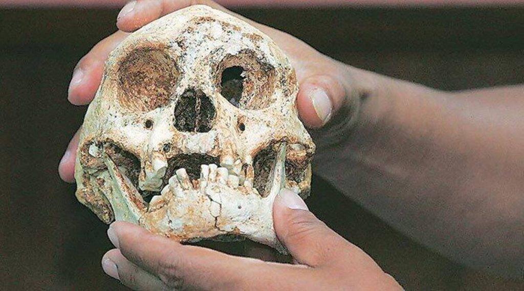बल्गेरियाई गुफा यूरोप में सबसे पहले होमो सेपियन्स के बारे में आश्चर्य प्रकट करती है