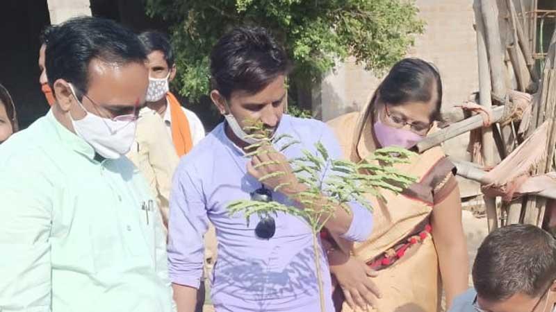 बीजेपी के स्थापना दिवस पर राज्य मंत्री श्री यादव ने किया पौधारोपण