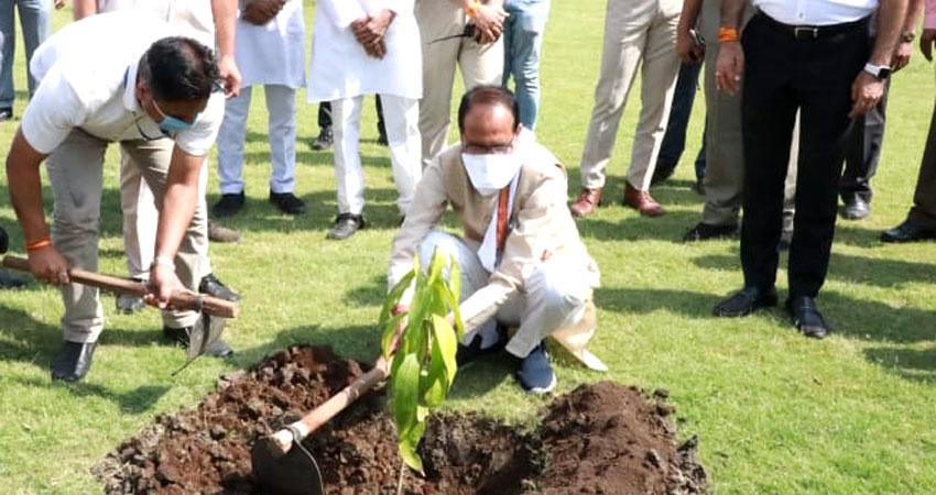 मुख्यमंत्री श्री चौहान ने आम का पौधा लगाया