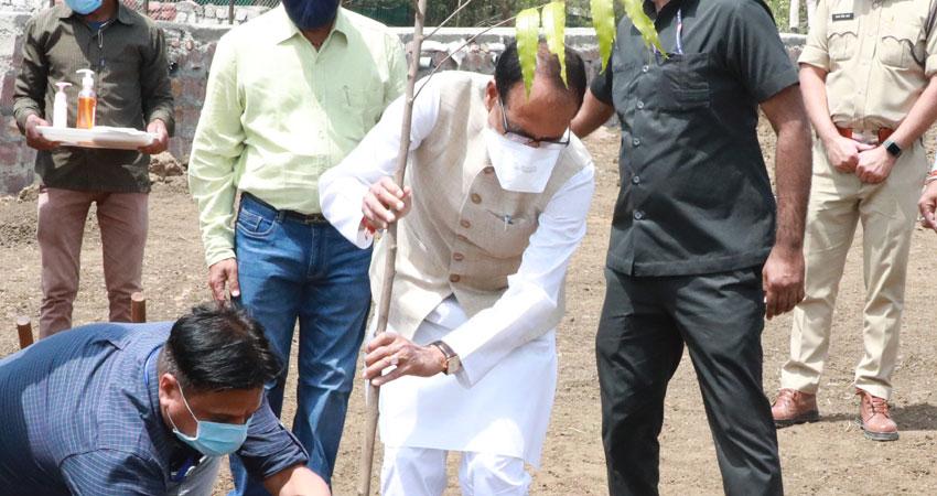 मुख्यमंत्री श्री चौहान ने रोपा अशोक का पौधा
