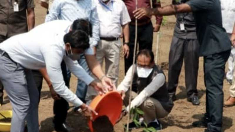 मुख्यमंत्री श्री चौहान ने मौलश्री का पौधा लगाया